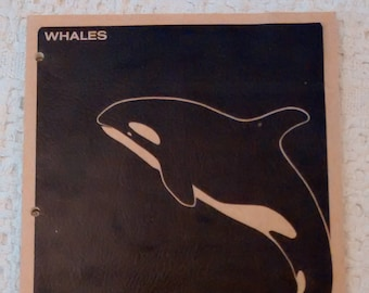 Whales Ocean Related Curriculum Activities, Whale Book, Learn about Whales, Book about Whales, Old School Book