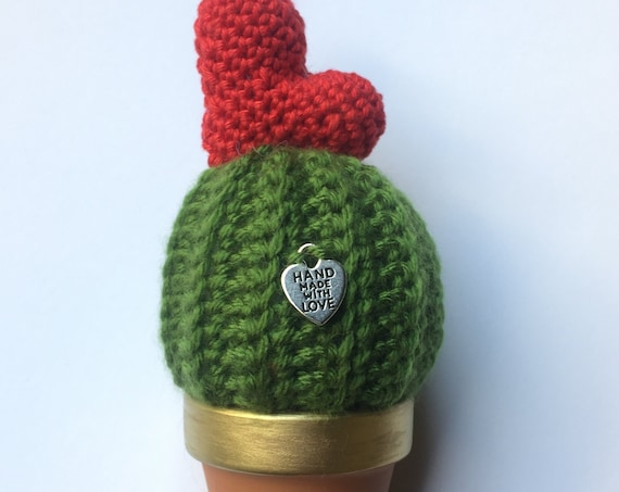Handmade Cactus with Heart- St.Valentine's day