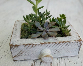 Shabby Chic | Tray | Farmhouse | Planter | Rustic | Cottage | Drawer