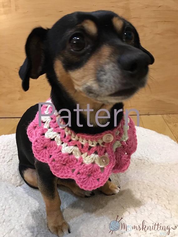 Crochet cat collar life 63+ Super ideas | 761x570