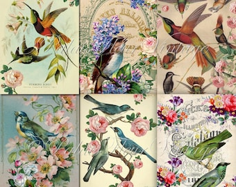A4 Antique Bird Wallpaper Paper 6 PACK Instant Download Vintage Floral Victorian Shabby Chic Craft Wrapping Scrap Digital PalaisFleurVintage