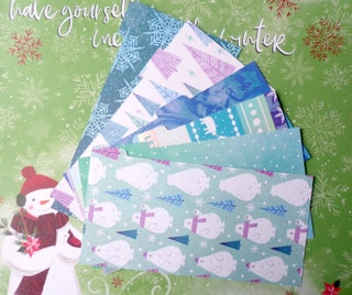 Wallet Budget Organizer Dividers  Set of 6 Dividers  Dave Ramsey Cash envelope Budget System Coupon  Polar Bear   MADE TO ORDER Custom
