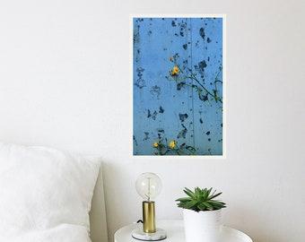 Abstract door photography - Blue door print- Barn door photography - Dandelion art print - Abstract fine-art photography- Inspirational gift
