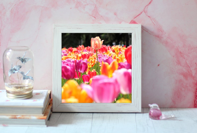 Motivational art  Tulip field wall art  Tulip field print  8x8 inches