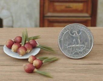 5 pieces. Red onion. Bulb onions. Onion sprouting. Miniature bow. Miniature dollhouse. Miniature food. Scale 1/12