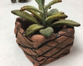 Green ceramic planter - nature terra cotta  drainage nature handmade pottery - cacti plants flowers perfect gift spring Mother's Day