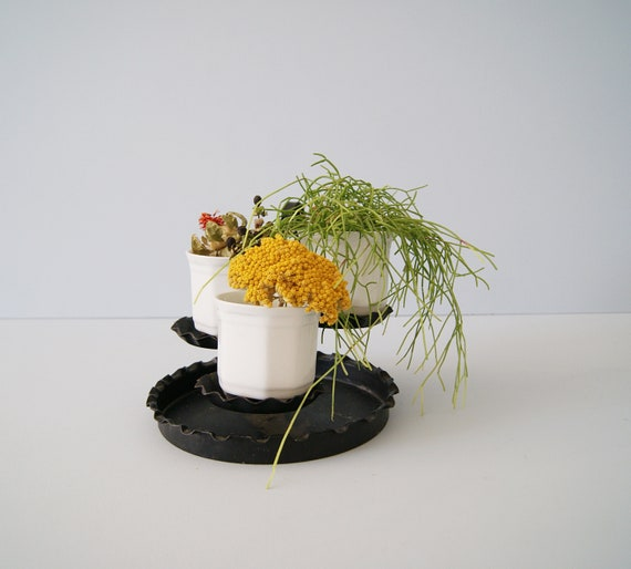 Plants etagere metal with plant pots, small flowers etagere