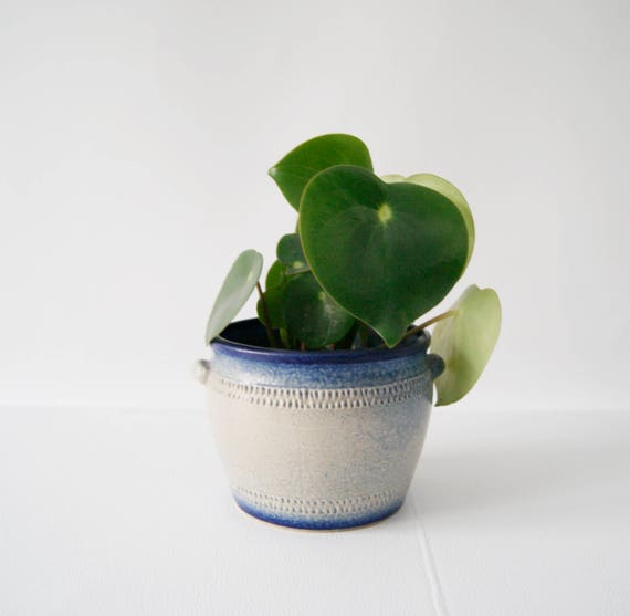 Plant pot vetter pottery, pottery plant pot