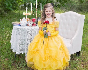 Belle inspired dress, belle dress , beauty and the beast, belle party, belle costume