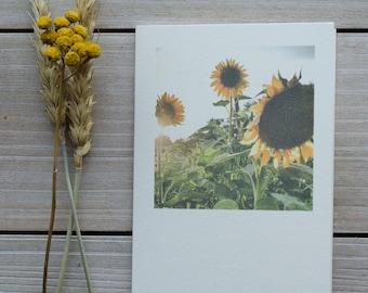 sunflower card, floral blank card, blank greeting cards, greeting card, blank card