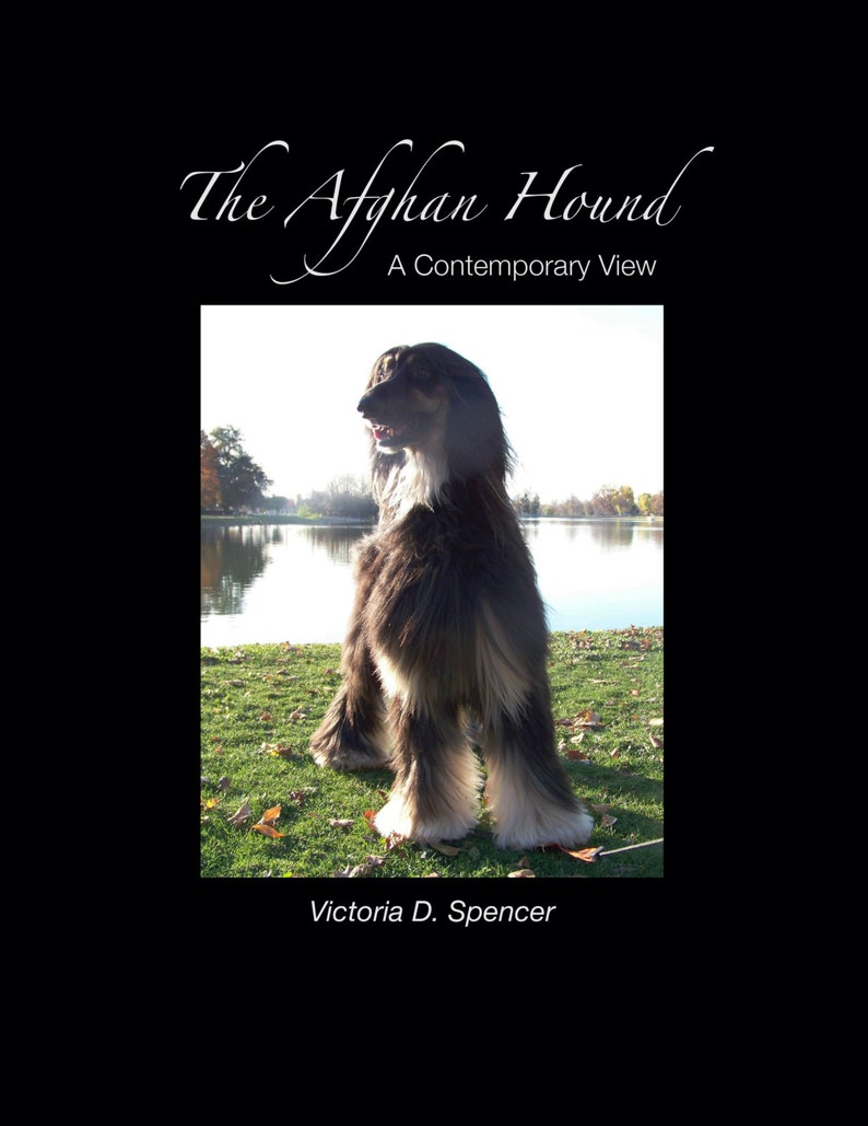 Book  The Afghan Hound a Contemporary View image 0