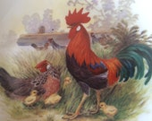 HEN and ROOSTER,H.Arndt,Ceramic Plate,Decorative Plate,Wall Plate,Bavaria Germann Burgwindbeim