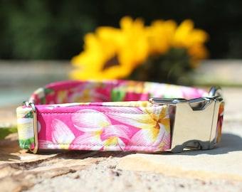 Hawaiian Flowers Collar | Floral Dog Collar | Female Dog Collar | Fabric Dog Collar | Pet Collar | Girl Dog Collar | Small Dog Collar
