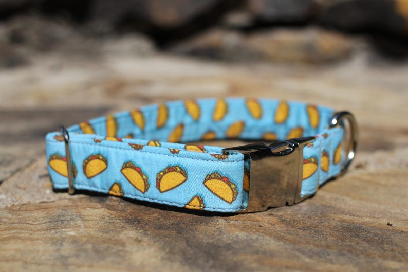Taco Collar  Dog Collar  Male Dog Collar  Female Dog Collar image 0