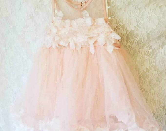 Fancy Flower Girl Chiffon Dress for Toddler Child or Large Doll ~ Slip Dress ~ Chiffon Overlay ~ Size 2T