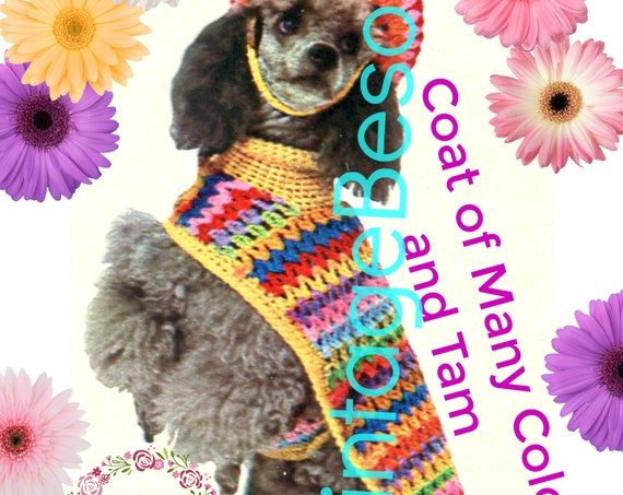 EASY Dog Coat Crochet Pattern • PDF Pattern • 1970s Pampered Dog • Vintage Crochet Pattern • Dog Sweater • Tam Hat Cap • Rainbow Dog Jacket