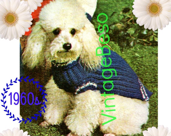 INSTANT Download • PDF Pattern • Dog Sweater KNITTING Pattern • Vintage 1960s Pampered Dog Coat Knitting Pattern • Knit Dog Sweater