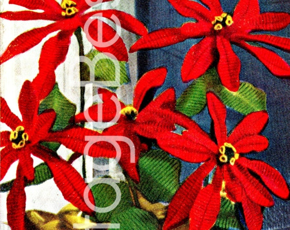 Poinsettia Crochet PATTERN • Vintage Crochet Christmas • 1950s Pattern • Poinsettia Plant Holiday Decor Gift • PDF • DIGITAL