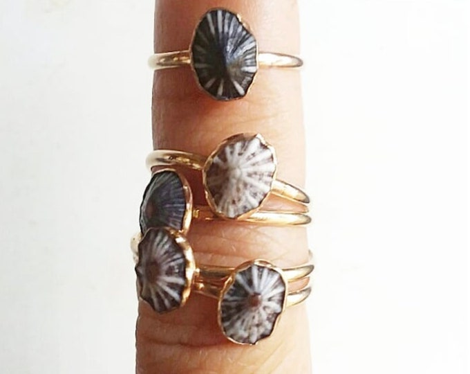 Recycled Gold-Filled Mini 'Opihi Ring