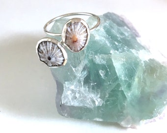 Sterling Silver Opihi Ring