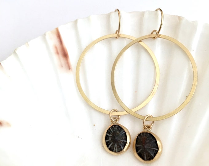 Opihi Hoop Earrings