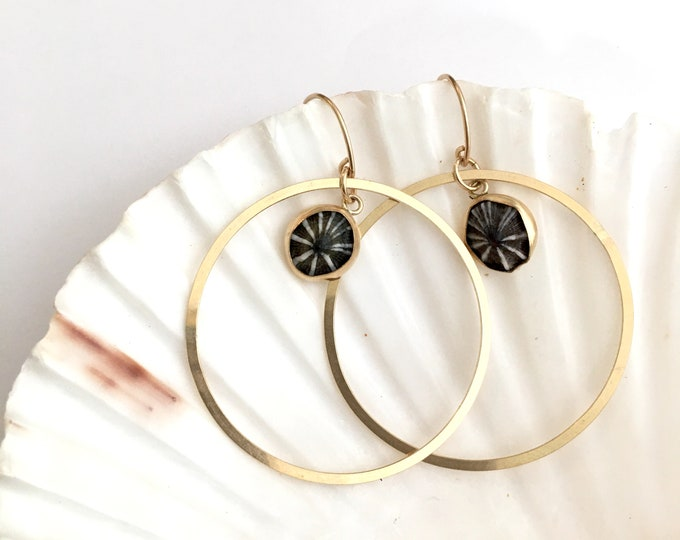 Round Opihi Earrings