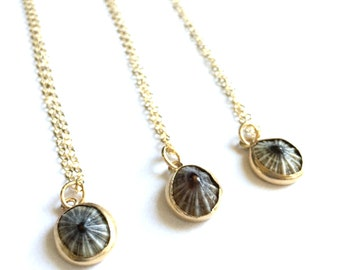 Opihi Necklace