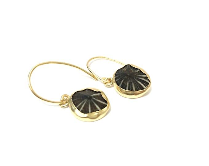 Opihi Earrings