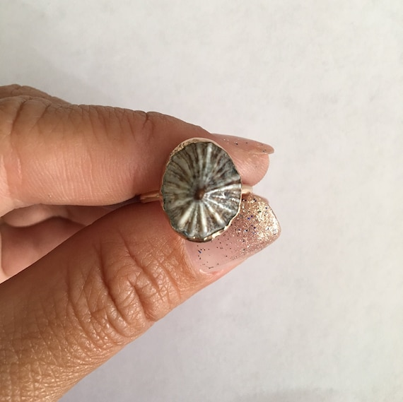 Recycled Gold-Filled 'Opihi Ring
