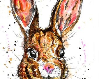 Hare Portrait Study