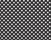 Black and White Small Dots by Riley Blake Designs