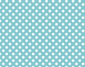 Aqua and White Small Dots by Riley Blake Designs