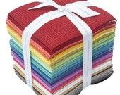 Texture 30 pc Fat Quarter Bundle by Sandy Gervais for Riley Blake Designs