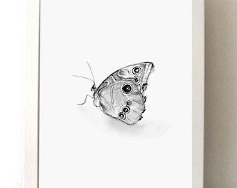Items Op Etsy Die Op Vlinder Tekening Set Van 2 Prints Natuur