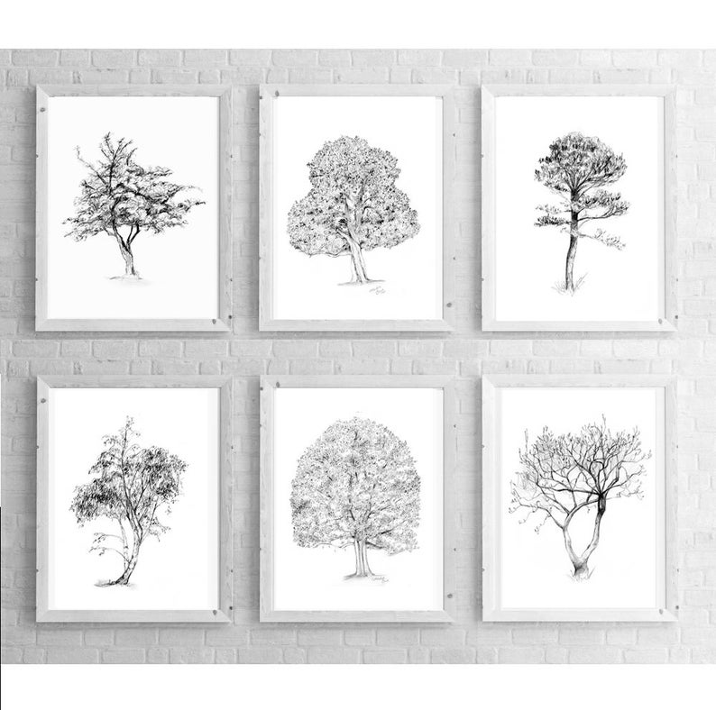 Wall art tree illustration Art print tree sketch magnolia birch tree Zen drawing pencil Tree art Set of 6 Tree Pencil drawings