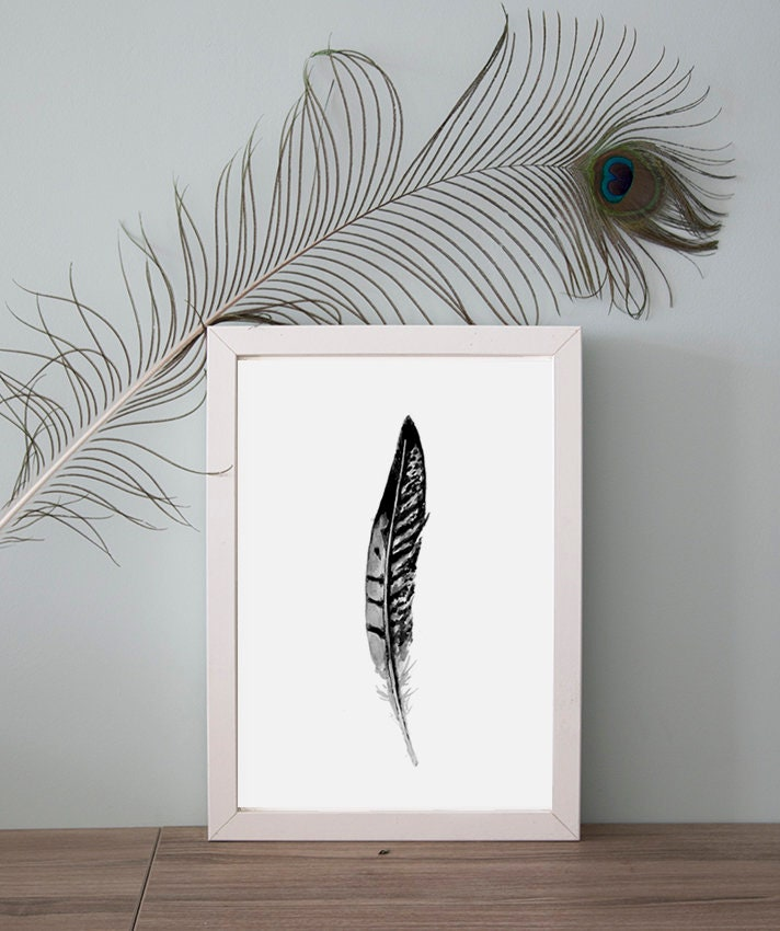 fasan feder aquarell malerei druck federn art schwarz graue etsy. Black Bedroom Furniture Sets. Home Design Ideas