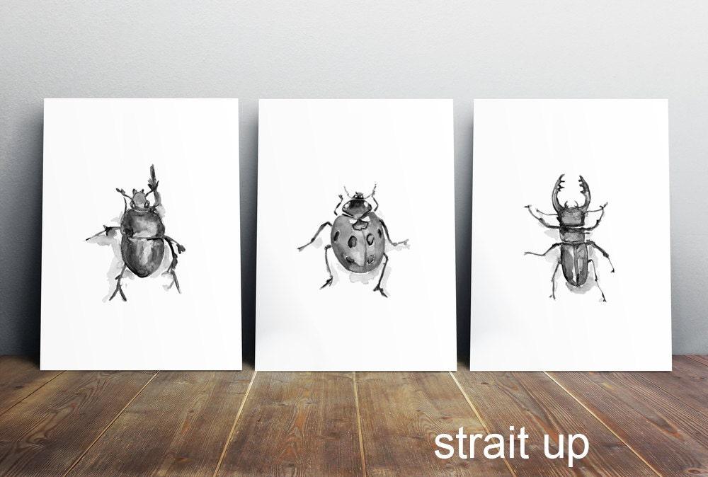 Acuarela de insectos-escarabajo arte pintura ilustración de | Etsy