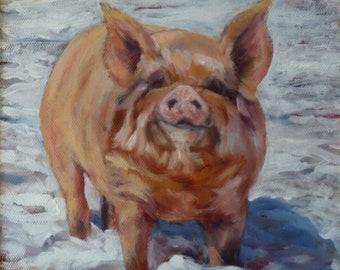 Pig-in-Snow, Pig art, Pig original oil