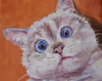 Domestic Cat, Cat art, Original oil