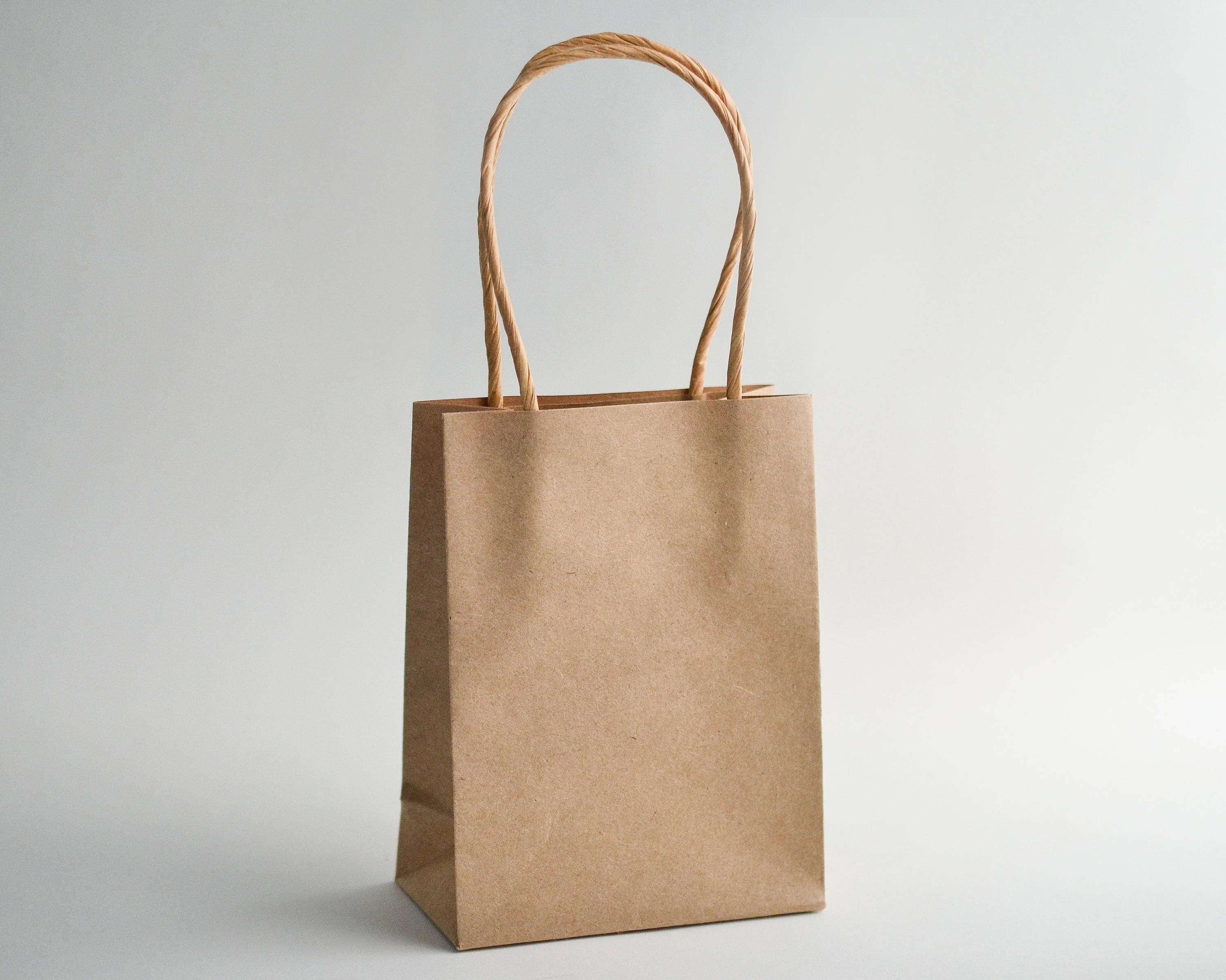 Brown Paper Bags, Kraft Bags, Paper Gift Bags, Gift Bags with ...