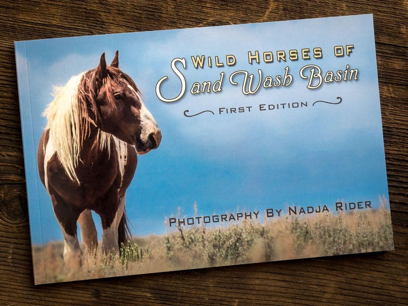 Sand Wash Basin Photography Book  Wild Horses of Sand Wash image 0