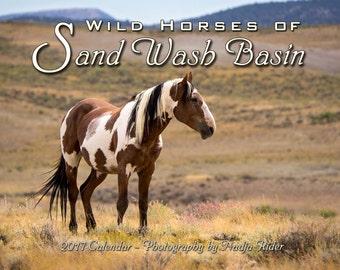 25% OFF all 2017 Wild Horses of Sand Wash Basin Wall Calendars, wild mustang photos, wild horses running, wild stallions, Northwest Colorado