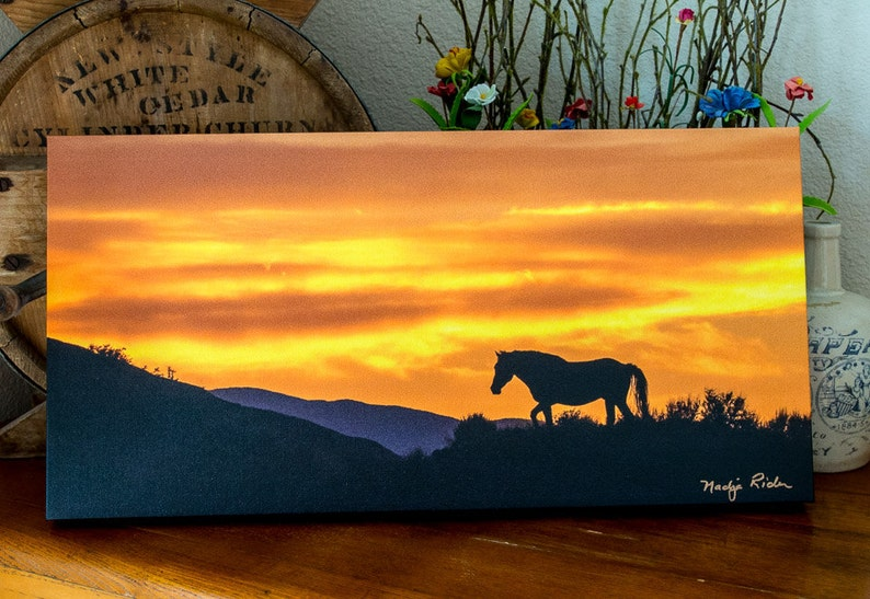 Mustang Silhouette Against a Blaze Orange Sky in Sand Wash image 0