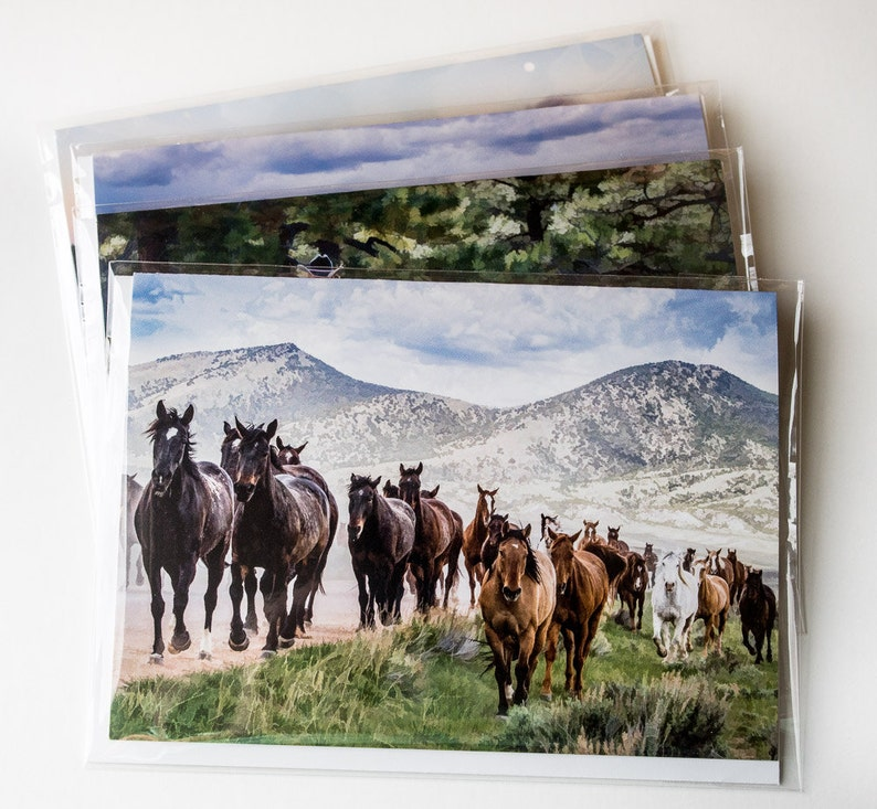 Sombrero Horse Drive Flintlock Muzzleloader Blast Set of 4 Series #1 The Real West 5x7 Cards Cowgirl on Horse with foal