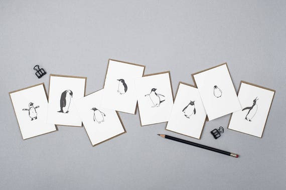 Birthday Note Cards Congratulations cards Small note car African Penguin cards Thank you cards Good Luck Card Letterpress cards