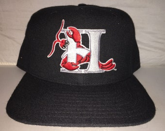 Vintage Hickory Crawdads Snapback hat cap rare 90s MiLB Minor League  Baseball NEW ERA 613ca2405d48