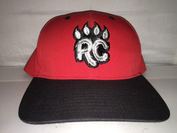 Vintage New Britain Rock Cats Snapback hat cap rare 90s  e4920c421a3b
