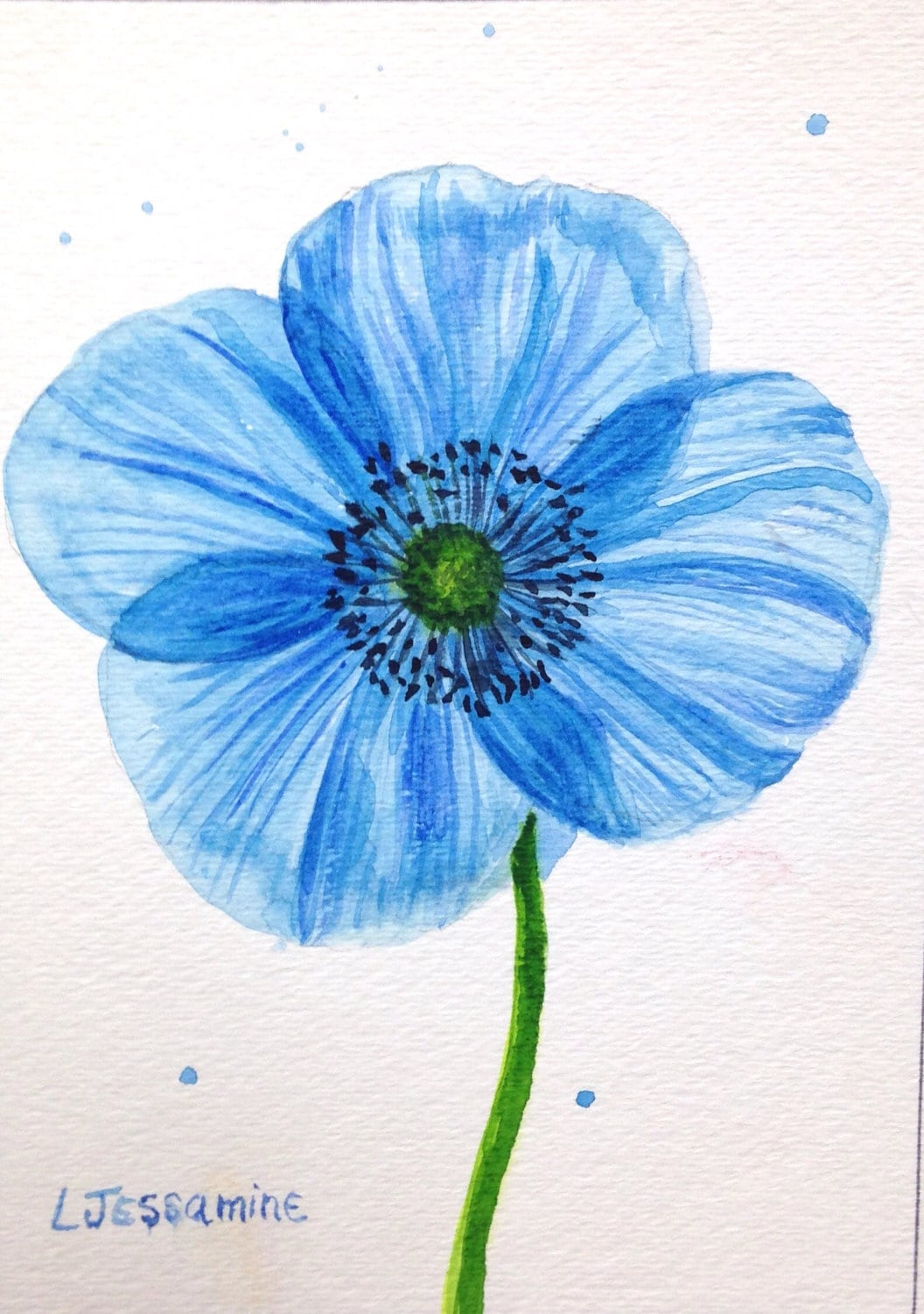 Blue Poppy Original Watercolor Painting Flower Painting Blue