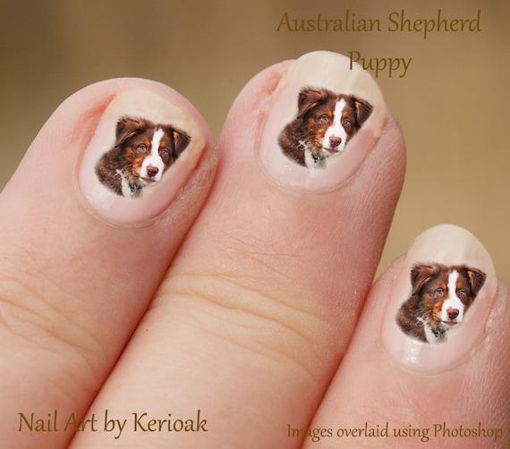 Australian Shepherd Tricolour Puppy Nail Art Stickers Dog Etsy