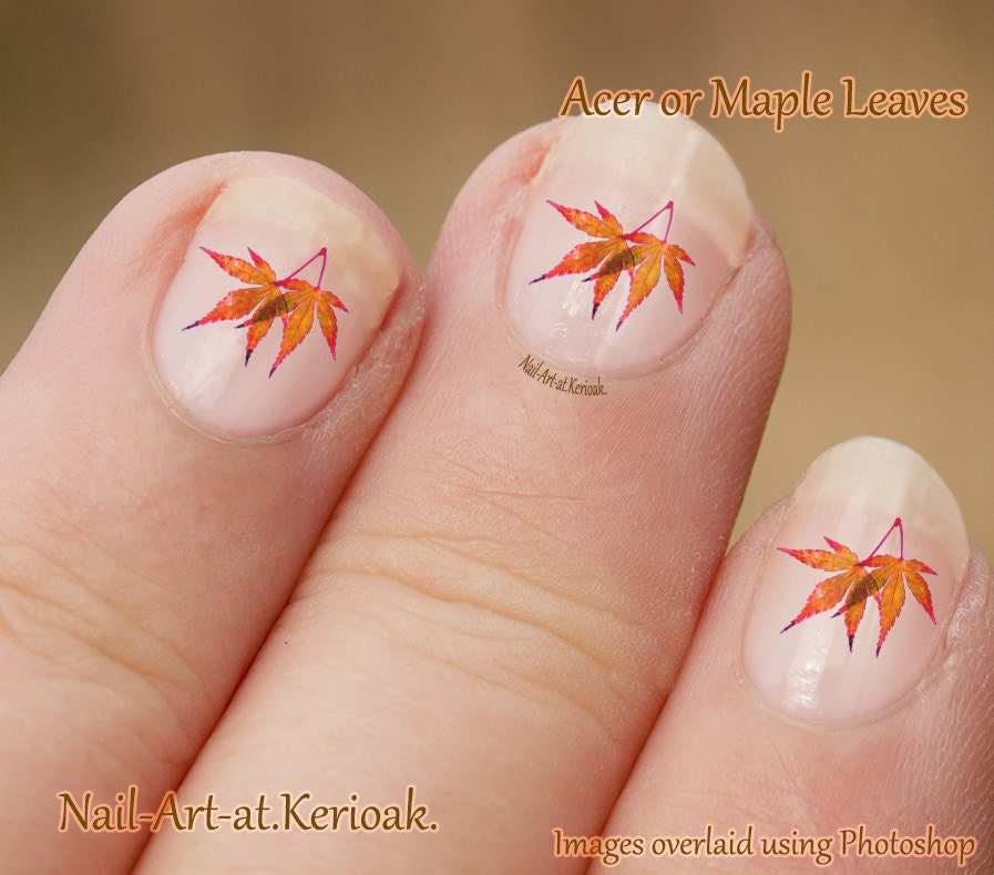 Acer Leaves Nail Art Maple Leaf Nail Art Stickers | Etsy